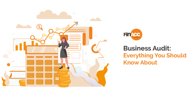 Business Audit: Everything You Should Know About